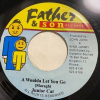 JUNIOR CAT / A WOULDA LET YOU GO