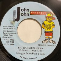 SPRAGGA BENZ & DON YOUTH / BIG BAD GUN HAWK