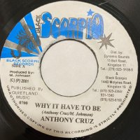 ANTHONY CRUZ / WHY IT HAVE TO BE