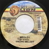SINGING MELODY / MEDLEY - LITTLE JOHN / MEDLEY