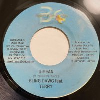 BLING DAWG feat. TERRY / U MEAN