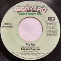 SHAGGY & RAYVON / BIG UP