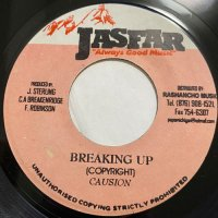 CAUSION / BREAKING UP