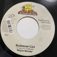 WAYNE WONDER / BASHMENT GIRL