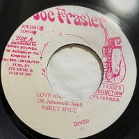 MIKEY SPICE / LOVE AND MERCY