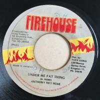 ANTHONY REDROSE / UNDER ME FAT THING