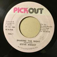 STEVE KNIGHT / SHARING THE NIGHT