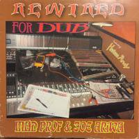 MAD PROFESSOR & JOE ARIWA / REWIRED FOR DUB