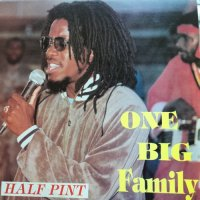 HALF PINT / ONE BIG FAMILY
