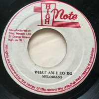 MELODIANS / WHAT AM I TO DO