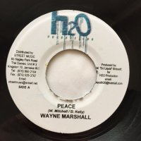 WAYNE MARSHALL / PEACE - TEFLON / FEEL THE VYBZ
