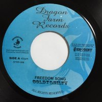 GOLDY & SILVA / FREEDOM SONG