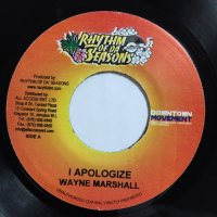 WAYNE MARSHALL / I APOLOGIZE