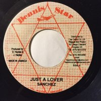 MIKEY MELODY / RIDING HIGH - SANCHEZ / JUST A LOVER