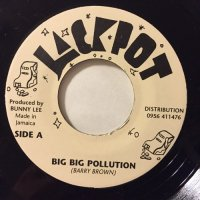 BARRY BROWN / BIG BIG POLLUTION