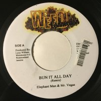 ELEPHANT MAN & MR. VEGAS / BUN IT ALL DAY - WAYNE MARSHALL & ASSASSIN / WEED SMOKE