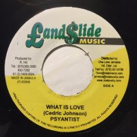 PSYANTIST / WHAT IS LOVE