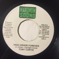 TONY CURTIS / HIGH GRADE FOREVER
