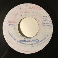 HORACE ANDY / MR. BASSIE