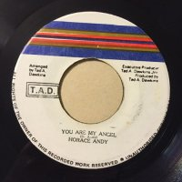 HORACE ANDY / YOU ARE MY ANGEL