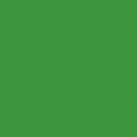 h846 鸚鵡緑