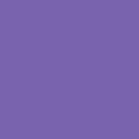 h907 桔梗色