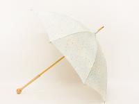 SAK-MHK005a 雨粒と紋白蝶