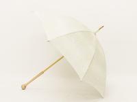 SAK-MHK005c 雨粒と紋白蝶