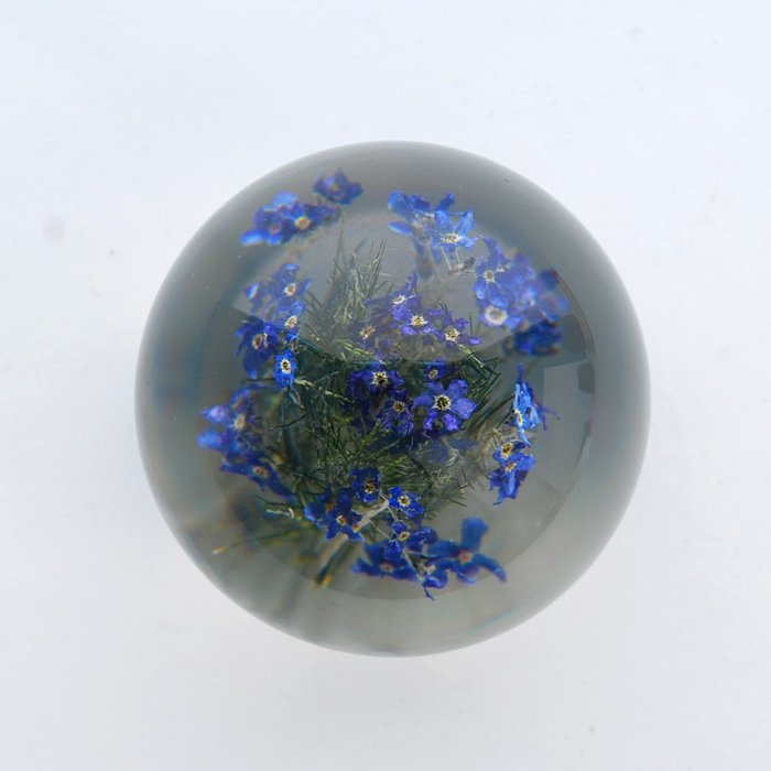Hafod Grange | Paperweight | Forget me not