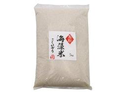 (新米)海藻米こしひかり 白米