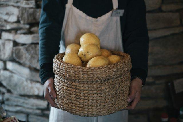 フレッシュ!パンとレモン おうちでわざわざセット