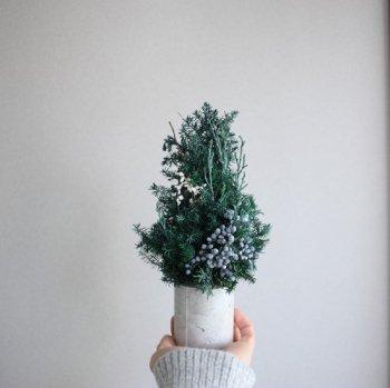 ちいさなツリー(配送専用ボックス付き)