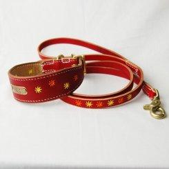 カラーヌメ 刺繍入り 幅広首輪&リードセット  19cm〜25cm