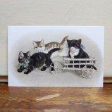 フランス製ポストカード 3匹の子猫 Ref.594 LUDOM EDITION