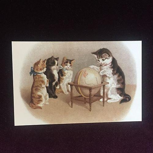 フランス製ポストカード  猫と地球儀 Ref.635 LUDOM EDITION