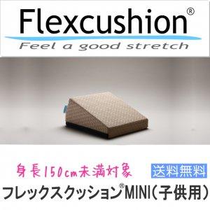 【子供用】フレックスクッションMINI