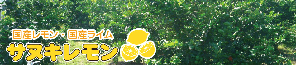 サヌキレモン