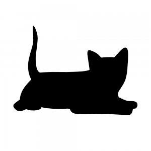 猫(147509319)