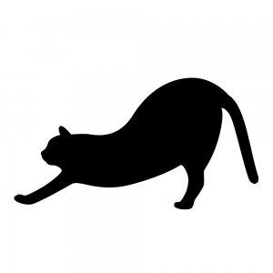 猫(147509320)