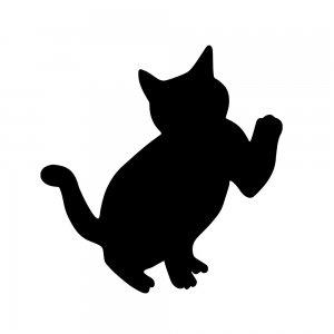 猫(147509323)