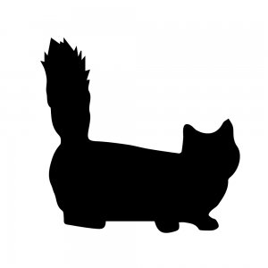 猫(147509325)