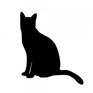 猫(147509327)
