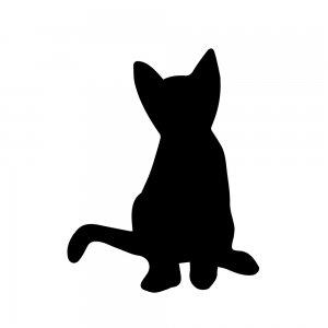 猫(147509330)