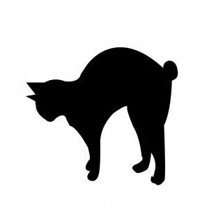 猫(147509332)