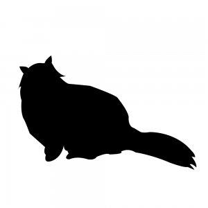猫(147509333)