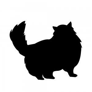 猫(147509336)