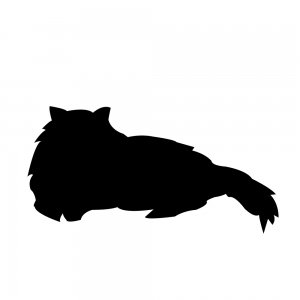 猫(147509337)