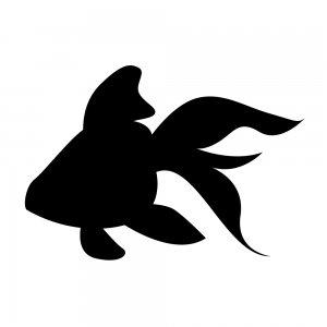 金魚(152958018)