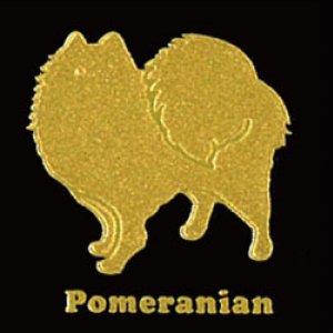 I LOVE DOG ポメラニアン(ゴールド)