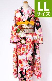 レンタル_KP01:赤地菊に桜[LL]×金地雪輪に花づくしふくら雀